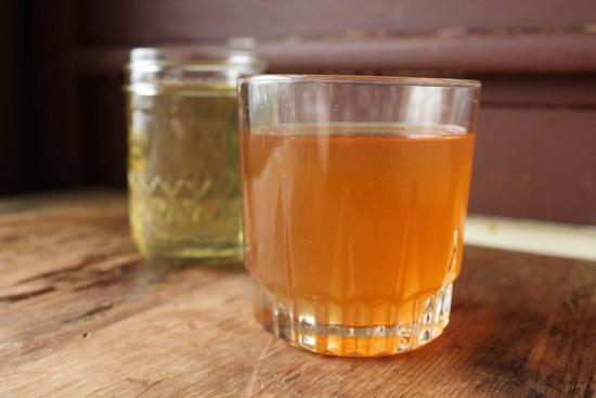 Чайный гриб: польза и вред, отзывы врачей