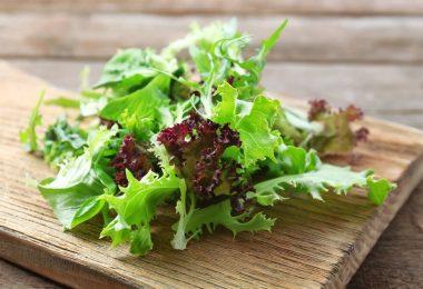 Листья салата: польза и вред