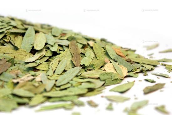 Листья сенны: польза и вред