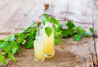 Самогон из березового сока: польза и вред