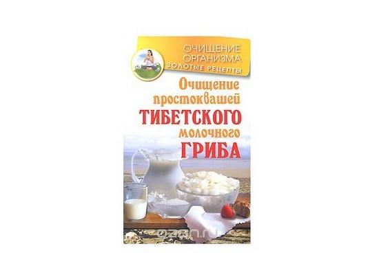 Тибетский кефирный гриб: польза и вред