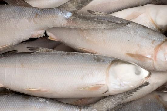 компонентный состав филе молочный рыбки
