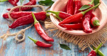 Острый перец: польза и вред для организма