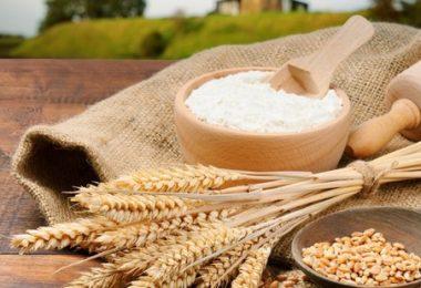 Пшеничная мука: польза и вред
