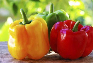 Сладкий перец: польза и вред для организма