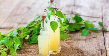 Березовый сок: польза и вред